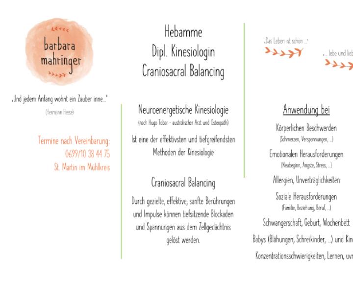 Neuroenergetische Kinesiologie und Cranio Sacral Balancing. Barbara Mahringer