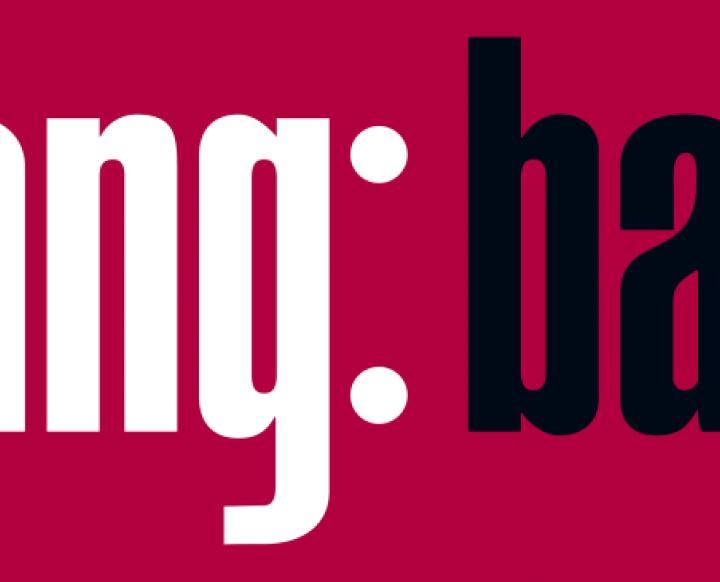Gebr. Lang Bau GmbH. Christian Lang